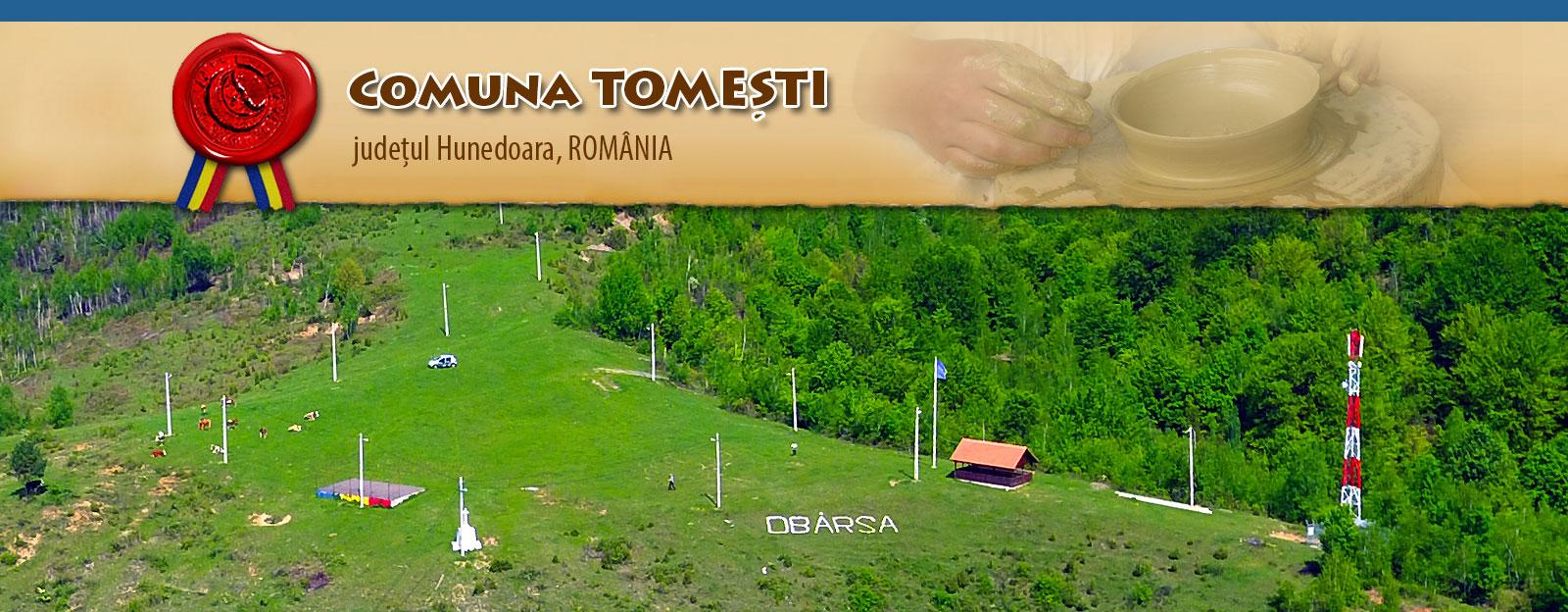 Consiliul Local si Primaria Comunei Tomesti